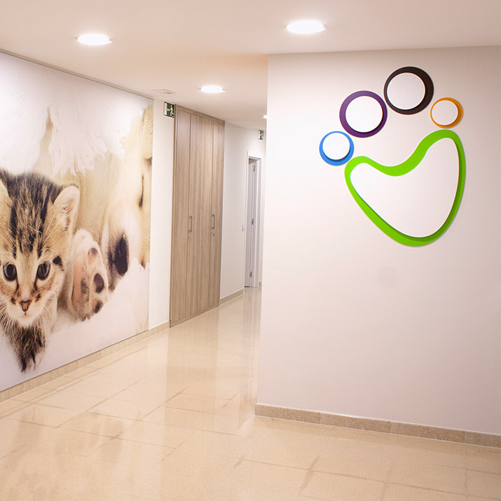 Dise o se al tica cl nica veterinaria vetland luzerta - Diseno de clinicas veterinarias ...